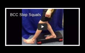 step squats